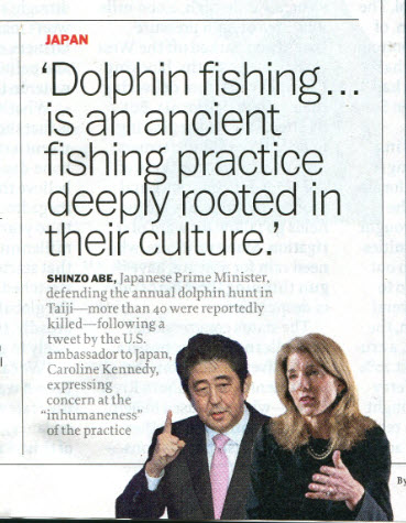 Time Japan Dolphins