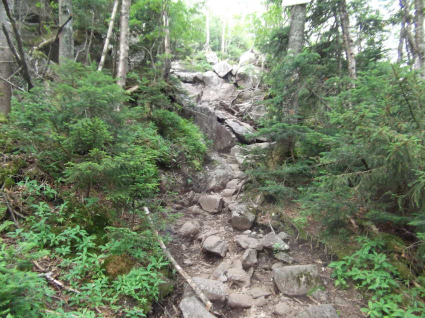 More Trail 2