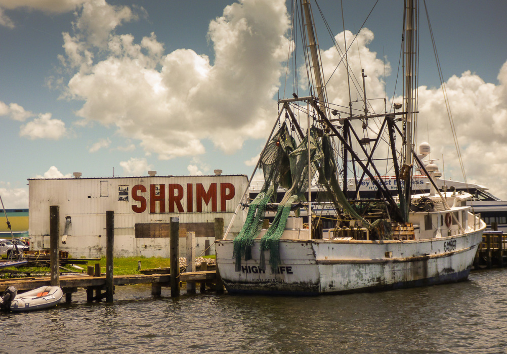 shrimp-boats-ft-myers-photos-4