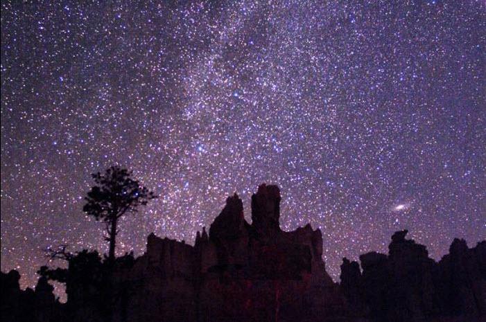 Andromeda by Pacholka