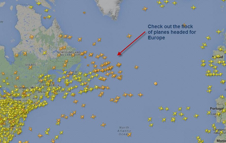 flock of planes