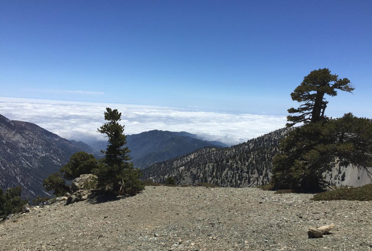6 - Clouds Still in LA